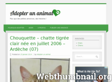 Détails : Adopter un animal